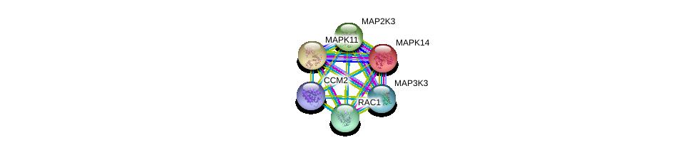 http://string-db.org/version_10/api/image/networkList?limit=0&targetmode=proteins&caller_identity=gene_cards&network_flavor=evidence&identifiers=9606.ENSP00000370503%0d%0a9606.ENSP00000229794%0d%0a9606.ENSP00000333685%0d%0a9606.ENSP00000345083%0d%0a9606.ENSP00000348461%0d%0a9606.ENSP00000354927%0d%0a