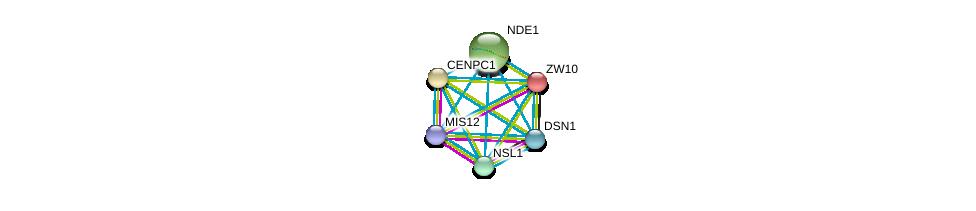 http://string-db.org/version_10/api/image/networkList?limit=0&targetmode=proteins&caller_identity=gene_cards&network_flavor=evidence&identifiers=9606.ENSP00000370557%0d%0a9606.ENSP00000273853%0d%0a9606.ENSP00000355944%0d%0a9606.ENSP00000362850%0d%0a9606.ENSP00000345892%0d%0a9606.ENSP00000200135%0d%0a