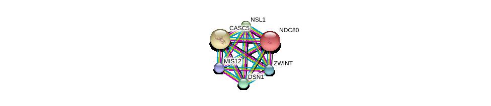 http://string-db.org/version_10/api/image/networkList?limit=0&targetmode=proteins&caller_identity=gene_cards&network_flavor=evidence&identifiers=9606.ENSP00000370557%0d%0a9606.ENSP00000363055%0d%0a9606.ENSP00000355944%0d%0a9606.ENSP00000362850%0d%0a9606.ENSP00000335463%0d%0a9606.ENSP00000261597%0d%0a