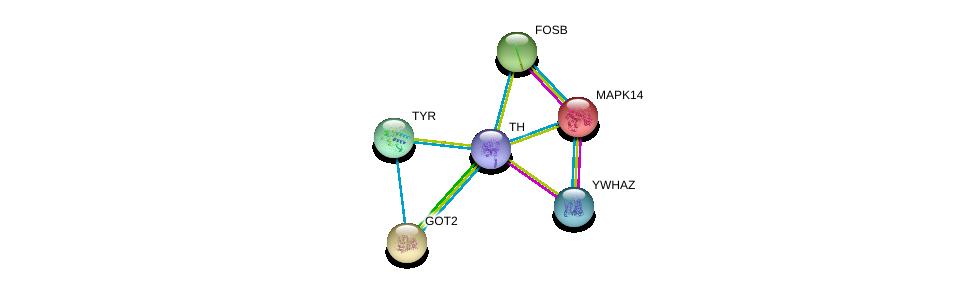 http://string-db.org/version_10/api/image/networkList?limit=0&targetmode=proteins&caller_identity=gene_cards&network_flavor=evidence&identifiers=9606.ENSP00000370571%0d%0a9606.ENSP00000309503%0d%0a9606.ENSP00000229794%0d%0a9606.ENSP00000245206%0d%0a9606.ENSP00000245919%0d%0a9606.ENSP00000263321%0d%0a