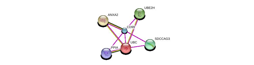 http://string-db.org/version_10/api/image/networkList?limit=0&targetmode=proteins&caller_identity=gene_cards&network_flavor=evidence&identifiers=9606.ENSP00000370588%0d%0a9606.ENSP00000344818%0d%0a9606.ENSP00000346032%0d%0a9606.ENSP00000347836%0d%0a9606.ENSP00000349929%0d%0a9606.ENSP00000419425%0d%0a