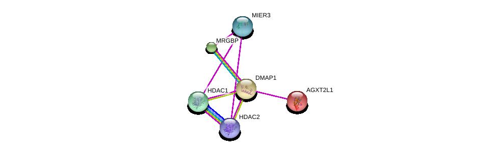 http://string-db.org/version_10/api/image/networkList?limit=0&targetmode=proteins&caller_identity=gene_cards&network_flavor=evidence&identifiers=9606.ENSP00000370611%0d%0a9606.ENSP00000359518%0d%0a9606.ENSP00000362649%0d%0a9606.ENSP00000430432%0d%0a9606.ENSP00000312697%0d%0a9606.ENSP00000296486%0d%0a