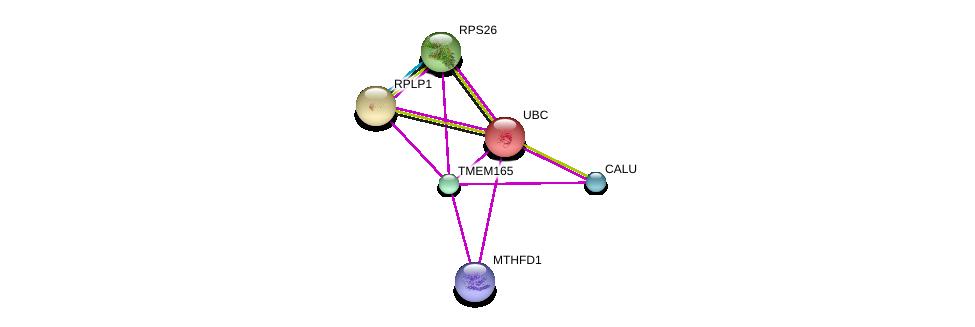 http://string-db.org/version_10/api/image/networkList?limit=0&targetmode=proteins&caller_identity=gene_cards&network_flavor=evidence&identifiers=9606.ENSP00000370736%0d%0a9606.ENSP00000344818%0d%0a9606.ENSP00000346037%0d%0a9606.ENSP00000348849%0d%0a9606.ENSP00000420381%0d%0a9606.ENSP00000450560%0d%0a