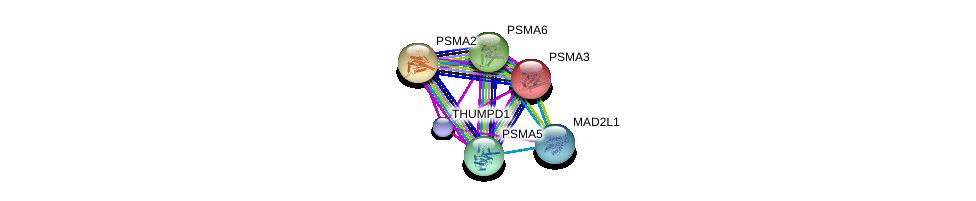 http://string-db.org/version_10/api/image/networkList?limit=0&targetmode=proteins&caller_identity=gene_cards&network_flavor=evidence&identifiers=9606.ENSP00000370741%0d%0a9606.ENSP00000223321%0d%0a9606.ENSP00000261479%0d%0a9606.ENSP00000271308%0d%0a9606.ENSP00000296509%0d%0a9606.ENSP00000216455%0d%0a