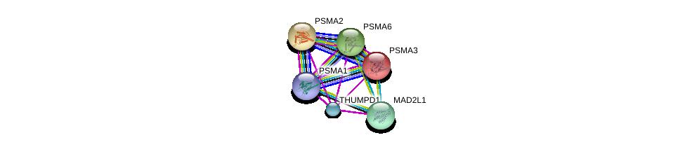 http://string-db.org/version_10/api/image/networkList?limit=0&targetmode=proteins&caller_identity=gene_cards&network_flavor=evidence&identifiers=9606.ENSP00000370741%0d%0a9606.ENSP00000261479%0d%0a9606.ENSP00000296509%0d%0a9606.ENSP00000216455%0d%0a9606.ENSP00000414359%0d%0a9606.ENSP00000223321%0d%0a