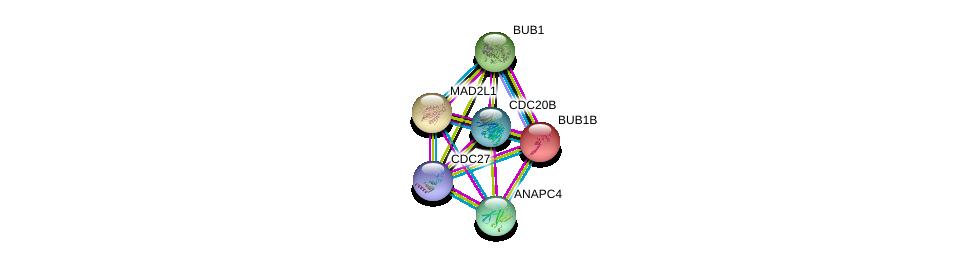 http://string-db.org/version_10/api/image/networkList?limit=0&targetmode=proteins&caller_identity=gene_cards&network_flavor=evidence&identifiers=9606.ENSP00000370781%0d%0a9606.ENSP00000296509%0d%0a9606.ENSP00000287598%0d%0a9606.ENSP00000318775%0d%0a9606.ENSP00000302530%0d%0a9606.ENSP00000434614%0d%0a