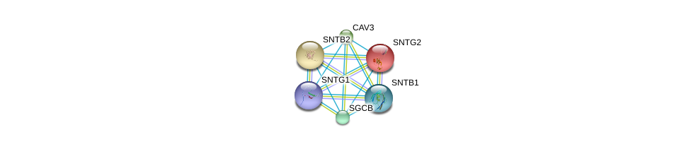 http://string-db.org/version_10/api/image/networkList?limit=0&targetmode=proteins&caller_identity=gene_cards&network_flavor=evidence&identifiers=9606.ENSP00000370839%0d%0a9606.ENSP00000341940%0d%0a9606.ENSP00000311837%0d%0a9606.ENSP00000338191%0d%0a9606.ENSP00000378965%0d%0a9606.ENSP00000429276%0d%0a
