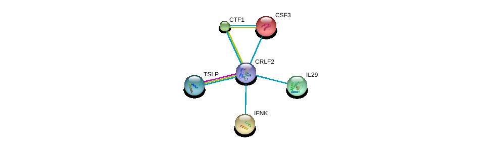 http://string-db.org/version_10/api/image/networkList?limit=0&targetmode=proteins&caller_identity=gene_cards&network_flavor=evidence&identifiers=9606.ENSP00000370979%0d%0a9606.ENSP00000339804%0d%0a9606.ENSP00000329991%0d%0a9606.ENSP00000225474%0d%0a9606.ENSP00000276943%0d%0a9606.ENSP00000279804%0d%0a