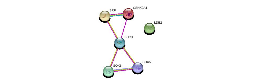 http://string-db.org/version_10/api/image/networkList?limit=0&targetmode=proteins&caller_identity=gene_cards&network_flavor=evidence&identifiers=9606.ENSP00000370990%0d%0a9606.ENSP00000324948%0d%0a9606.ENSP00000398273%0d%0a9606.ENSP00000217244%0d%0a9606.ENSP00000265354%0d%0a9606.ENSP00000306772%0d%0a