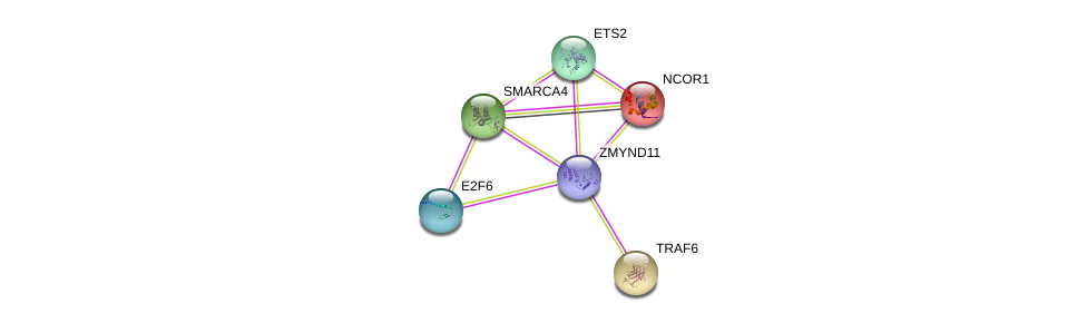 http://string-db.org/version_10/api/image/networkList?limit=0&targetmode=proteins&caller_identity=gene_cards&network_flavor=evidence&identifiers=9606.ENSP00000371003%0d%0a9606.ENSP00000353344%0d%0a9606.ENSP00000268712%0d%0a9606.ENSP00000337853%0d%0a9606.ENSP00000350720%0d%0a9606.ENSP00000370936%0d%0a