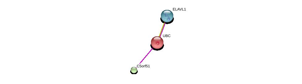 http://string-db.org/version_10/api/image/networkList?limit=0&targetmode=proteins&caller_identity=gene_cards&network_flavor=evidence&identifiers=9606.ENSP00000371061%0d%0a9606.ENSP00000344818%0d%0a9606.ENSP00000385269%0d%0a