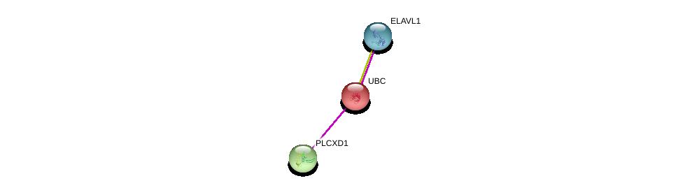 http://string-db.org/version_10/api/image/networkList?limit=0&targetmode=proteins&caller_identity=gene_cards&network_flavor=evidence&identifiers=9606.ENSP00000371073%0d%0a9606.ENSP00000344818%0d%0a9606.ENSP00000385269%0d%0a