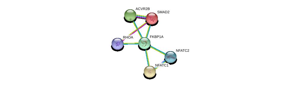 http://string-db.org/version_10/api/image/networkList?limit=0&targetmode=proteins&caller_identity=gene_cards&network_flavor=evidence&identifiers=9606.ENSP00000371138%0d%0a9606.ENSP00000327850%0d%0a9606.ENSP00000340361%0d%0a9606.ENSP00000262160%0d%0a9606.ENSP00000379330%0d%0a9606.ENSP00000400175%0d%0a