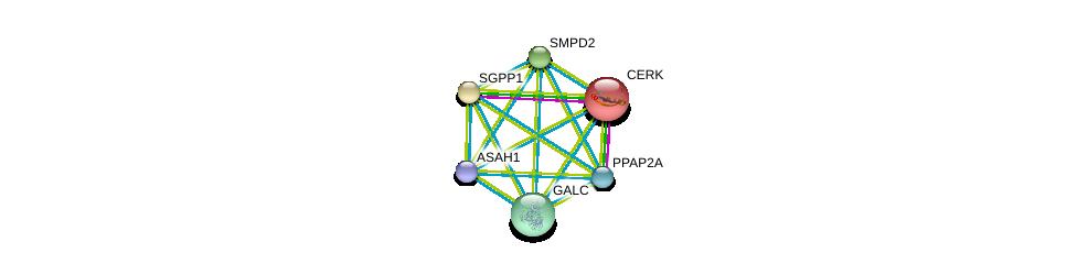 http://string-db.org/version_10/api/image/networkList?limit=0&targetmode=proteins&caller_identity=gene_cards&network_flavor=evidence&identifiers=9606.ENSP00000371152%0d%0a9606.ENSP00000216264%0d%0a9606.ENSP00000247225%0d%0a9606.ENSP00000258052%0d%0a9606.ENSP00000261304%0d%0a9606.ENSP00000264775%0d%0a