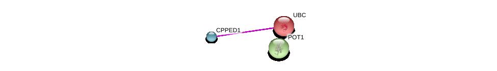 http://string-db.org/version_10/api/image/networkList?limit=0&targetmode=proteins&caller_identity=gene_cards&network_flavor=evidence&identifiers=9606.ENSP00000371193%0d%0a9606.ENSP00000344818%0d%0a9606.ENSP00000350249%0d%0a