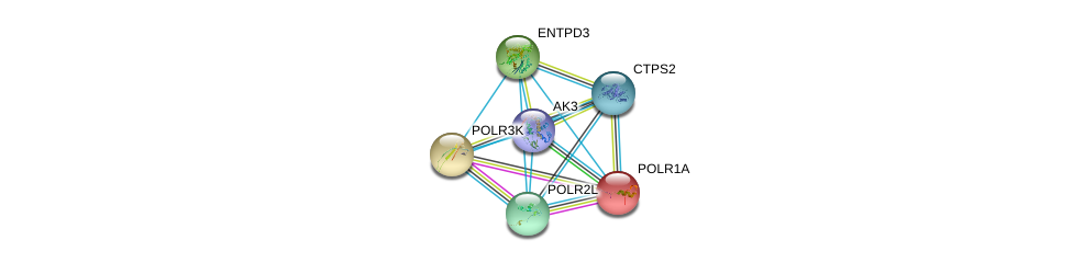 http://string-db.org/version_10/api/image/networkList?limit=0&targetmode=proteins&caller_identity=gene_cards&network_flavor=evidence&identifiers=9606.ENSP00000371230%0d%0a9606.ENSP00000301825%0d%0a9606.ENSP00000352222%0d%0a9606.ENSP00000293860%0d%0a9606.ENSP00000263857%0d%0a9606.ENSP00000324124%0d%0a