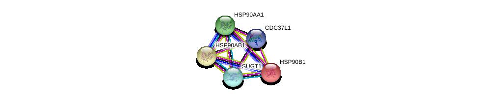 http://string-db.org/version_10/api/image/networkList?limit=0&targetmode=proteins&caller_identity=gene_cards&network_flavor=evidence&identifiers=9606.ENSP00000371278%0d%0a9606.ENSP00000335153%0d%0a9606.ENSP00000325875%0d%0a9606.ENSP00000367208%0d%0a9606.ENSP00000299767%0d%0a9606.ENSP00000299767%0d%0a