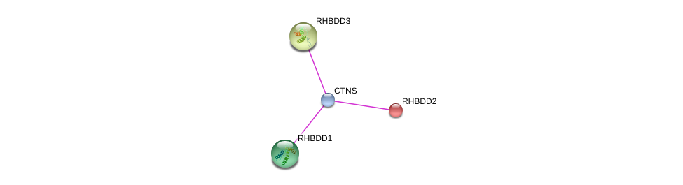 http://string-db.org/version_10/api/image/networkList?limit=0&targetmode=proteins&caller_identity=gene_cards&network_flavor=evidence&identifiers=9606.ENSP00000371294%0d%0a9606.ENSP00000344779%0d%0a9606.ENSP00000216085%0d%0a9606.ENSP00000006777%0d%0a