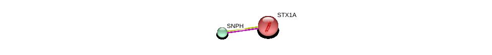 http://string-db.org/version_10/api/image/networkList?limit=0&targetmode=proteins&caller_identity=gene_cards&network_flavor=evidence&identifiers=9606.ENSP00000371297%0d%0a9606.ENSP00000222812%0d%0a