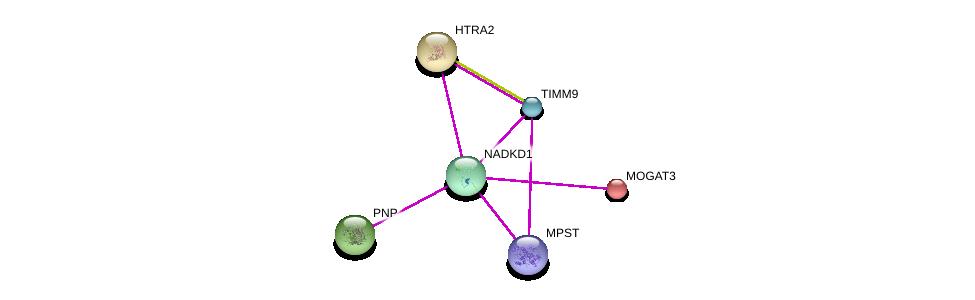 http://string-db.org/version_10/api/image/networkList?limit=0&targetmode=proteins&caller_identity=gene_cards&network_flavor=evidence&identifiers=9606.ENSP00000371362%0d%0a9606.ENSP00000354532%0d%0a9606.ENSP00000258080%0d%0a9606.ENSP00000380318%0d%0a9606.ENSP00000378588%0d%0a9606.ENSP00000223114%0d%0a