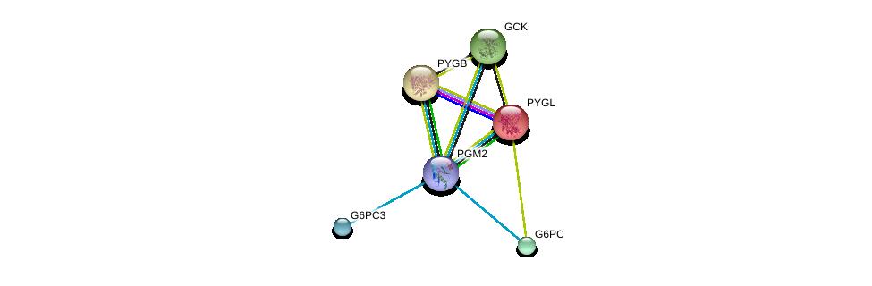 http://string-db.org/version_10/api/image/networkList?limit=0&targetmode=proteins&caller_identity=gene_cards&network_flavor=evidence&identifiers=9606.ENSP00000371393%0d%0a9606.ENSP00000216392%0d%0a9606.ENSP00000223366%0d%0a9606.ENSP00000253801%0d%0a9606.ENSP00000269097%0d%0a9606.ENSP00000216962%0d%0a