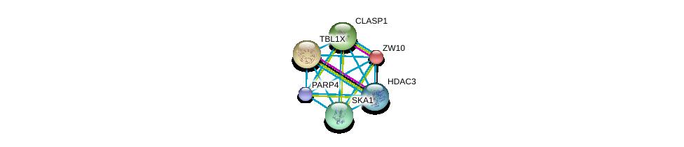 http://string-db.org/version_10/api/image/networkList?limit=0&targetmode=proteins&caller_identity=gene_cards&network_flavor=evidence&identifiers=9606.ENSP00000371419%0d%0a9606.ENSP00000200135%0d%0a9606.ENSP00000217964%0d%0a9606.ENSP00000263710%0d%0a9606.ENSP00000285116%0d%0a9606.ENSP00000302967%0d%0a