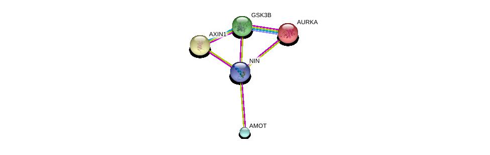 http://string-db.org/version_10/api/image/networkList?limit=0&targetmode=proteins&caller_identity=gene_cards&network_flavor=evidence&identifiers=9606.ENSP00000371472%0d%0a9606.ENSP00000324806%0d%0a9606.ENSP00000361027%0d%0a9606.ENSP00000361027%0d%0a9606.ENSP00000216911%0d%0a9606.ENSP00000262320%0d%0a