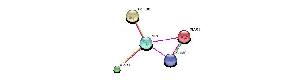 http://string-db.org/version_10/api/image/networkList?limit=0&targetmode=proteins&caller_identity=gene_cards&network_flavor=evidence&identifiers=9606.ENSP00000371472%0d%0a9606.ENSP00000324806%0d%0a9606.ENSP00000361027%0d%0a9606.ENSP00000361027%0d%0a9606.ENSP00000376076%0d%0a9606.ENSP00000249636%0d%0a