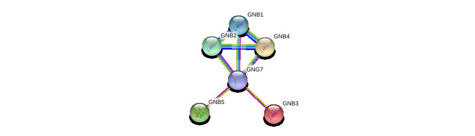 http://string-db.org/version_10/api/image/networkList?limit=0&targetmode=proteins&caller_identity=gene_cards&network_flavor=evidence&identifiers=9606.ENSP00000371594%0d%0a9606.ENSP00000232564%0d%0a9606.ENSP00000261837%0d%0a9606.ENSP00000305260%0d%0a9606.ENSP00000229264%0d%0a9606.ENSP00000367869%0d%0a