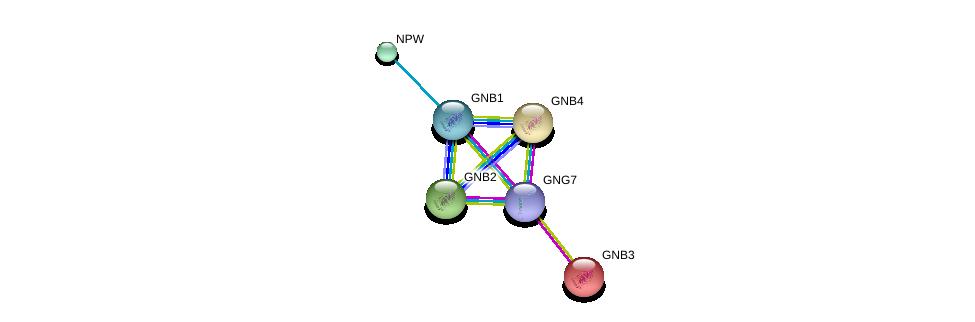 http://string-db.org/version_10/api/image/networkList?limit=0&targetmode=proteins&caller_identity=gene_cards&network_flavor=evidence&identifiers=9606.ENSP00000371594%0d%0a9606.ENSP00000305260%0d%0a9606.ENSP00000232564%0d%0a9606.ENSP00000229264%0d%0a9606.ENSP00000367869%0d%0a9606.ENSP00000330070%0d%0a