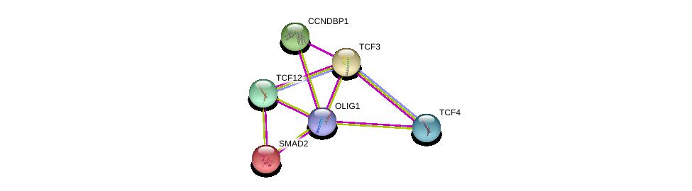http://string-db.org/version_10/api/image/networkList?limit=0&targetmode=proteins&caller_identity=gene_cards&network_flavor=evidence&identifiers=9606.ENSP00000371785%0d%0a9606.ENSP00000262160%0d%0a9606.ENSP00000300213%0d%0a9606.ENSP00000346440%0d%0a9606.ENSP00000262965%0d%0a9606.ENSP00000331057%0d%0a