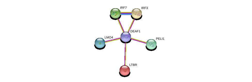http://string-db.org/version_10/api/image/networkList?limit=0&targetmode=proteins&caller_identity=gene_cards&network_flavor=evidence&identifiers=9606.ENSP00000371846%0d%0a9606.ENSP00000359573%0d%0a9606.ENSP00000228918%0d%0a9606.ENSP00000310127%0d%0a9606.ENSP00000329411%0d%0a9606.ENSP00000351789%0d%0a