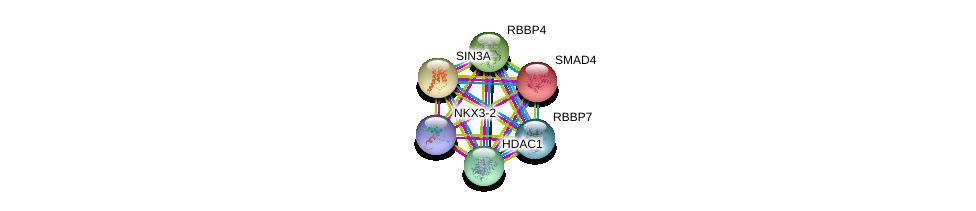 http://string-db.org/version_10/api/image/networkList?limit=0&targetmode=proteins&caller_identity=gene_cards&network_flavor=evidence&identifiers=9606.ENSP00000371875%0d%0a9606.ENSP00000353622%0d%0a9606.ENSP00000369424%0d%0a9606.ENSP00000362649%0d%0a9606.ENSP00000362592%0d%0a9606.ENSP00000341551%0d%0a
