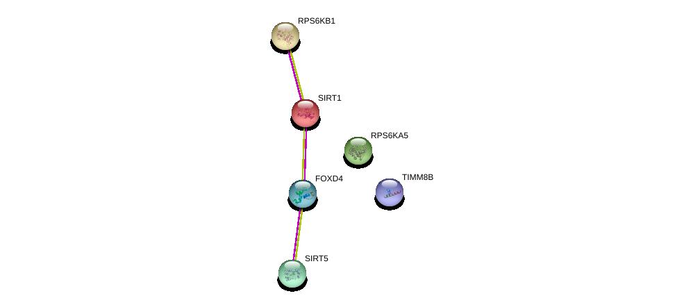 http://string-db.org/version_10/api/image/networkList?limit=0&targetmode=proteins&caller_identity=gene_cards&network_flavor=evidence&identifiers=9606.ENSP00000371940%0d%0a9606.ENSP00000212015%0d%0a9606.ENSP00000368552%0d%0a9606.ENSP00000438455%0d%0a9606.ENSP00000225577%0d%0a9606.ENSP00000261991%0d%0a