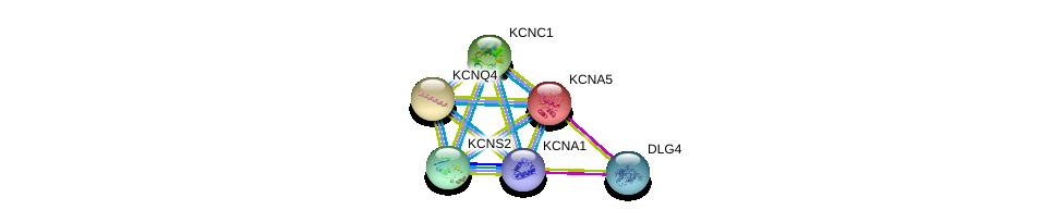http://string-db.org/version_10/api/image/networkList?limit=0&targetmode=proteins&caller_identity=gene_cards&network_flavor=evidence&identifiers=9606.ENSP00000371985%0d%0a9606.ENSP00000293813%0d%0a9606.ENSP00000252321%0d%0a9606.ENSP00000262916%0d%0a9606.ENSP00000265969%0d%0a9606.ENSP00000287042%0d%0a