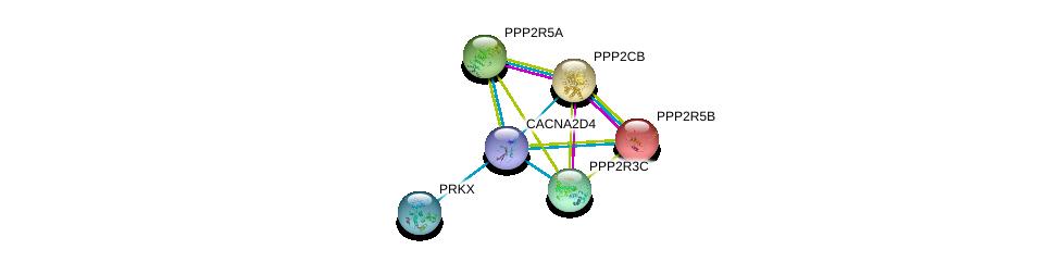 http://string-db.org/version_10/api/image/networkList?limit=0&targetmode=proteins&caller_identity=gene_cards&network_flavor=evidence&identifiers=9606.ENSP00000372169%0d%0a9606.ENSP00000164133%0d%0a9606.ENSP00000221138%0d%0a9606.ENSP00000261461%0d%0a9606.ENSP00000261475%0d%0a9606.ENSP00000262848%0d%0a