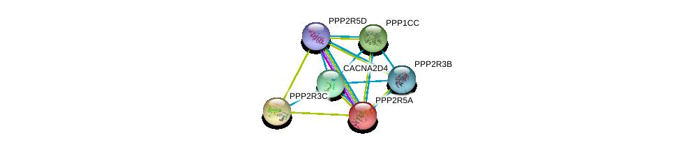 http://string-db.org/version_10/api/image/networkList?limit=0&targetmode=proteins&caller_identity=gene_cards&network_flavor=evidence&identifiers=9606.ENSP00000372169%0d%0a9606.ENSP00000335084%0d%0a9606.ENSP00000261461%0d%0a9606.ENSP00000417963%0d%0a9606.ENSP00000375080%0d%0a9606.ENSP00000261475%0d%0a