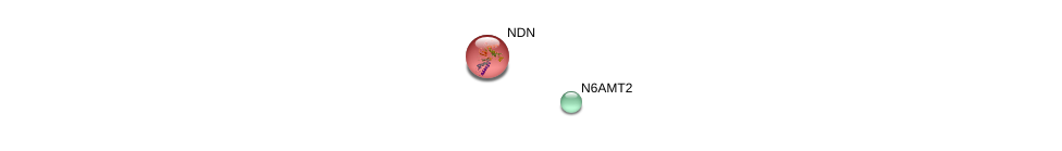http://string-db.org/version_10/api/image/networkList?limit=0&targetmode=proteins&caller_identity=gene_cards&network_flavor=evidence&identifiers=9606.ENSP00000372202%0d%0a9606.ENSP00000332643%0d%0a