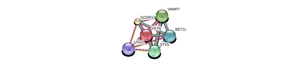 http://string-db.org/version_10/api/image/networkList?limit=0&targetmode=proteins&caller_identity=gene_cards&network_flavor=evidence&identifiers=9606.ENSP00000372210%0d%0a9606.ENSP00000223369%0d%0a9606.ENSP00000225724%0d%0a9606.ENSP00000294179%0d%0a9606.ENSP00000440586%0d%0a9606.ENSP00000262640%0d%0a