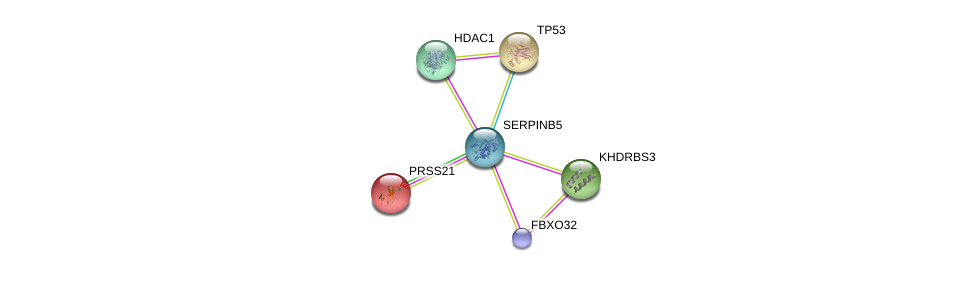 http://string-db.org/version_10/api/image/networkList?limit=0&targetmode=proteins&caller_identity=gene_cards&network_flavor=evidence&identifiers=9606.ENSP00000372221%0d%0a9606.ENSP00000269305%0d%0a9606.ENSP00000362649%0d%0a9606.ENSP00000348108%0d%0a9606.ENSP00000005995%0d%0a9606.ENSP00000428205%0d%0a