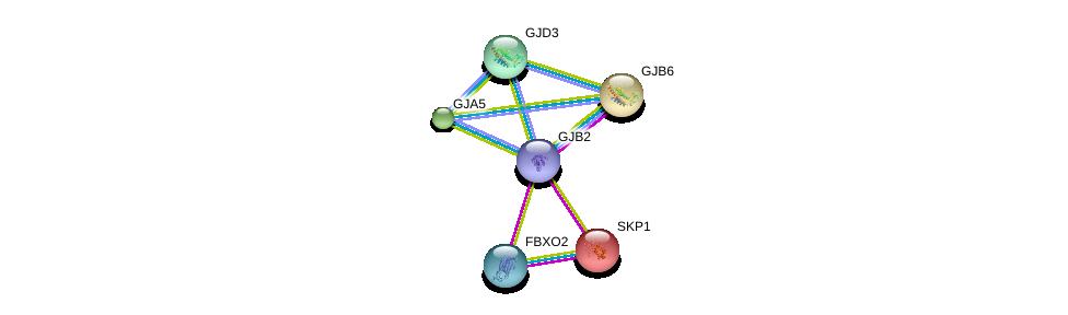 http://string-db.org/version_10/api/image/networkList?limit=0&targetmode=proteins&caller_identity=gene_cards&network_flavor=evidence&identifiers=9606.ENSP00000372295%0d%0a9606.ENSP00000271348%0d%0a9606.ENSP00000336832%0d%0a9606.ENSP00000231487%0d%0a9606.ENSP00000346240%0d%0a9606.ENSP00000241124%0d%0a