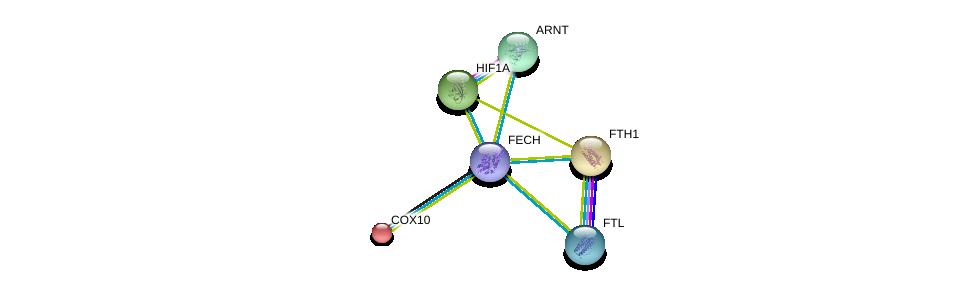 http://string-db.org/version_10/api/image/networkList?limit=0&targetmode=proteins&caller_identity=gene_cards&network_flavor=evidence&identifiers=9606.ENSP00000372326%0d%0a9606.ENSP00000261643%0d%0a9606.ENSP00000338018%0d%0a9606.ENSP00000273550%0d%0a9606.ENSP00000366525%0d%0a9606.ENSP00000351407%0d%0a