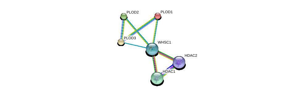 http://string-db.org/version_10/api/image/networkList?limit=0&targetmode=proteins&caller_identity=gene_cards&network_flavor=evidence&identifiers=9606.ENSP00000372347%0d%0a9606.ENSP00000362649%0d%0a9606.ENSP00000196061%0d%0a9606.ENSP00000223127%0d%0a9606.ENSP00000282903%0d%0a9606.ENSP00000430432%0d%0a