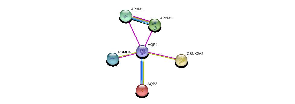 http://string-db.org/version_10/api/image/networkList?limit=0&targetmode=proteins&caller_identity=gene_cards&network_flavor=evidence&identifiers=9606.ENSP00000372654%0d%0a9606.ENSP00000199280%0d%0a9606.ENSP00000357879%0d%0a9606.ENSP00000347408%0d%0a9606.ENSP00000292807%0d%0a9606.ENSP00000262506%0d%0a