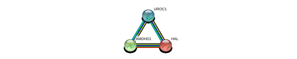 http://string-db.org/version_10/api/image/networkList?limit=0&targetmode=proteins&caller_identity=gene_cards&network_flavor=evidence&identifiers=9606.ENSP00000373073%0d%0a9606.ENSP00000261208%0d%0a9606.ENSP00000266736%0d%0a