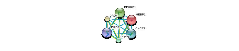 http://string-db.org/version_10/api/image/networkList?limit=0&targetmode=proteins&caller_identity=gene_cards&network_flavor=evidence&identifiers=9606.ENSP00000373169%0d%0a9606.ENSP00000272928%0d%0a9606.ENSP00000014930%0d%0a9606.ENSP00000176183%0d%0a9606.ENSP00000216629%0d%0a9606.ENSP00000217305%0d%0a