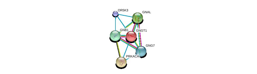 http://string-db.org/version_10/api/image/networkList?limit=0&targetmode=proteins&caller_identity=gene_cards&network_flavor=evidence&identifiers=9606.ENSP00000373194%0d%0a9606.ENSP00000334051%0d%0a9606.ENSP00000367869%0d%0a9606.ENSP00000248572%0d%0a9606.ENSP00000309591%0d%0a9606.ENSP00000371594%0d%0a