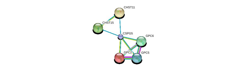 http://string-db.org/version_10/api/image/networkList?limit=0&targetmode=proteins&caller_identity=gene_cards&network_flavor=evidence&identifiers=9606.ENSP00000373244%0d%0a9606.ENSP00000366246%0d%0a9606.ENSP00000292377%0d%0a9606.ENSP00000366267%0d%0a9606.ENSP00000305725%0d%0a9606.ENSP00000333947%0d%0a
