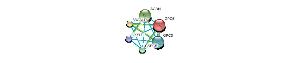 http://string-db.org/version_10/api/image/networkList?limit=0&targetmode=proteins&caller_identity=gene_cards&network_flavor=evidence&identifiers=9606.ENSP00000373244%0d%0a9606.ENSP00000381666%0d%0a9606.ENSP00000377836%0d%0a9606.ENSP00000368678%0d%0a9606.ENSP00000368496%0d%0a9606.ENSP00000366267%0d%0a