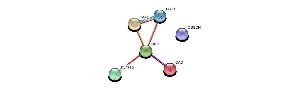 http://string-db.org/version_10/api/image/networkList?limit=0&targetmode=proteins&caller_identity=gene_cards&network_flavor=evidence&identifiers=9606.ENSP00000373274%0d%0a9606.ENSP00000344818%0d%0a9606.ENSP00000264705%0d%0a9606.ENSP00000455507%0d%0a9606.ENSP00000418379%0d%0a9606.ENSP00000276072%0d%0a